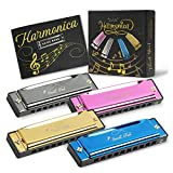 SMALL FISH Harmonica for Toddlers, Kids, and...