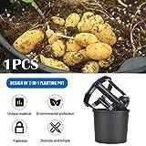 gorgebuy vaso per fioriera in plastica 2-in-1 - vaso per coltivazione di verdure in vaso, contenitore vaso per vasi in plastica per patate, carote, pomodori, zenzero, arachidi (1pcs)