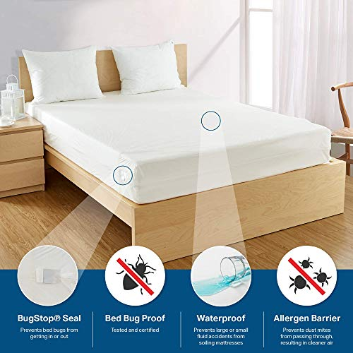 "Bargoose | Zippered Mattress Cover | Vinyl Bed Protector | Waterproof Material | Premium Box Spring Encasement | Guards from Bed Bugs, Pests & Liquids | Brushed Silk Finish (Queen, 9"" Deep)"