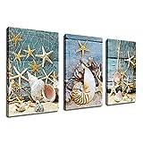 Cuadro dearte de pared de lienzo de 3 piezas -Red de pesca de concha de estrella de mar Piedra en arenas de playa Pintura contemporánea Decoración de pared 30x50cm (12x20in) x3Con marco