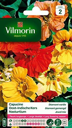 Vilmorin 5192442 Pack de Graines Capucine Diamant Variée Double Naine