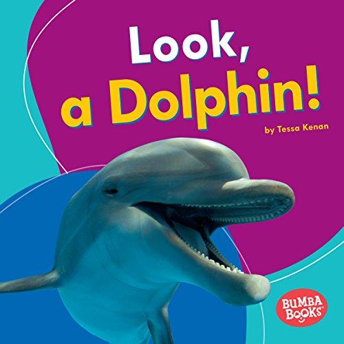 Look, a Dolphin! copertina