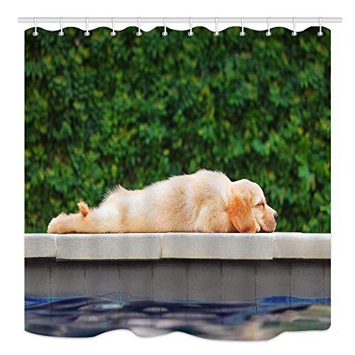 Cortina de ducha para perros, pequeño cachorro labrador golden retriever perezoso acostado...