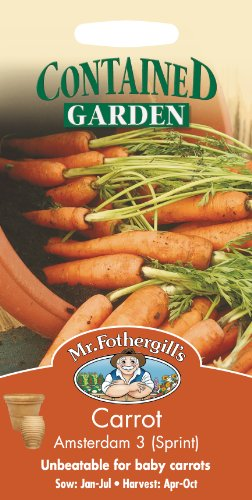 Mr. Fothergill's 16898 Sachet de 1500 graines de carottes Amsterdam Forcing 3 Sprint