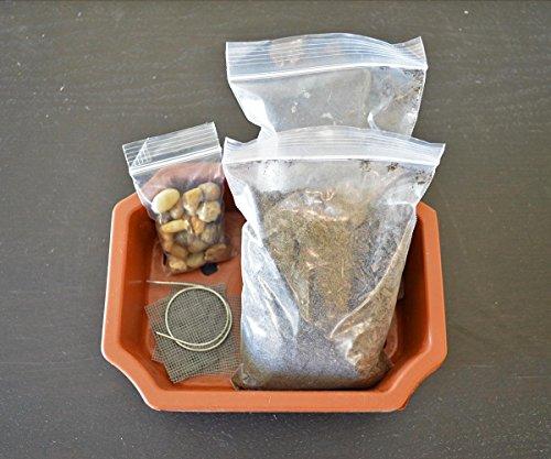 9GreenBox Bonsai Potting Kit, 6.25' Bonsai Pot Included