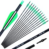 COLORFUL EAGLE Archery 28Inch / 30Inch / 31Inch Carbon Arrow Practice Hunting Arrows with Removable Tips for Compound & Recurve Bow(Pack of 12) (28)