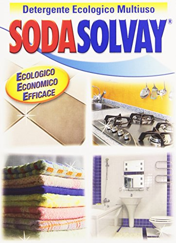 Sodasolvay Detergente Ecologico Multiuso, 1kg