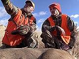 Public Land Mule Deer Hunt - Three Mule Deer In One Day