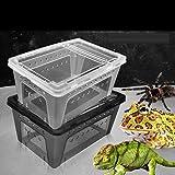 Wasserreptil Transportbox Fütterung Brutbox für Terrarium - 9