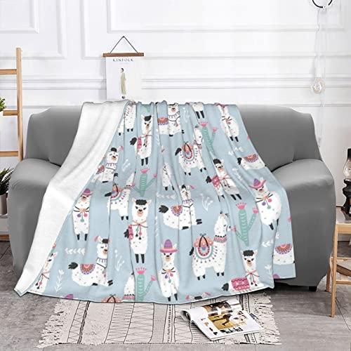 Kuscheldecke, Warme Fleecedecke als Sofadecke Couchdecke Wohnzimmerdecke, Flauschig Weiche Decke, Kuscheldecke Sommerdecke Wohndecken,130x150cm