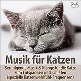 Musik für Katzen - Beruhigende Musik & Klänge für die Katze zum Entspannen und Schlafen (spezielle Katzenwohlfühl-Frequenzen)