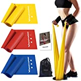 Resistance Bands Set,Exercise Bands for Physical Therapy,Yoga,Pilates,Rehab,Stretching,Beginner and Home Workout,Workout Bands of Different Strengths,Non-Latex Elastic Stretch Bands