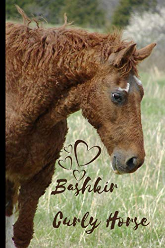 Bashkir Curly Horse Notebook For Horse Lovers: Composition Notebook 6x9' Blank Lined Journal