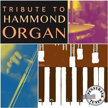 Tribute to Hammond Organ