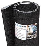 WALKINGBELTS Walking Belts LLC - Stairmaster Quinton ClubTrack Serial#: Beginning 377 Treadmill Running Belt 2ply Sand Blast + Free 1oz Lube
