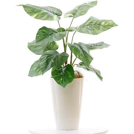 【銀と光触媒で空気をきれいに】プレミアム光触媒人工観葉植物 フェイクグリーン「ポトス 12LVS 高さ60cm(白丸ポット)」NO93691(B60)