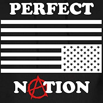 Perfect Nation, Vol. 1