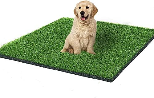 Fortune Star 100 cm X 80 cm tappetini e zerbini per cani in erba artificiale,tappeti per interni all'aperto, fori di drenaggio,erba finta,tappeto erboso per cani e decorazione del prato