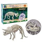 BANDRA Dinosaurier Fossil Dig Kit Archäologie Ausgrabungs-Kits für Kinder Jungen