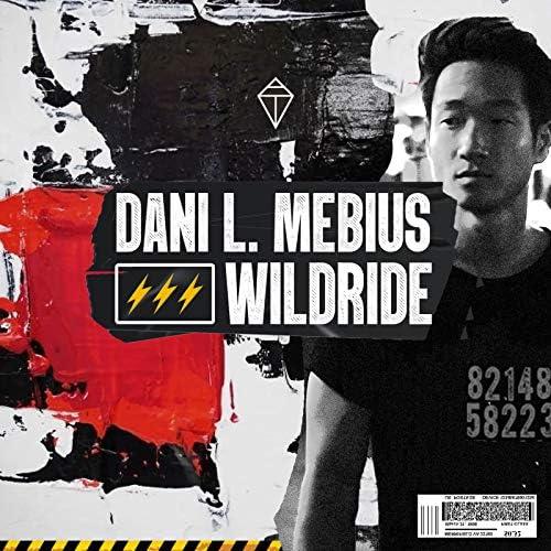 Dani L. Mebius