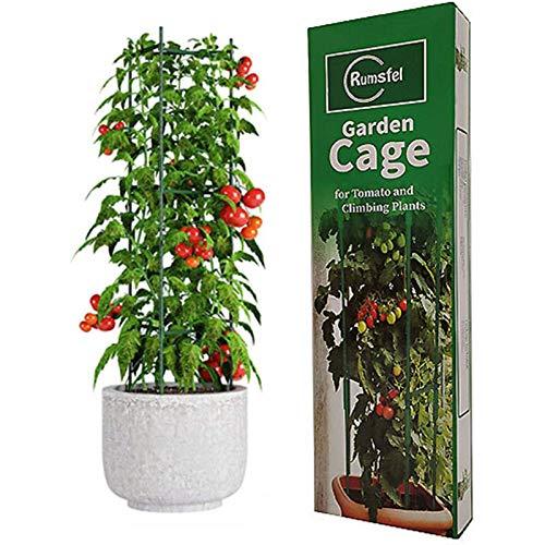 Tuinplant ondersteunende kooien, Tomaten groeiende kooi, Stevige tuinplant Ondersteunende staken, Tuin Trellis Verticale klimplanten Ondersteuning Klimplanten, Bloemen, Fruitkooi (Een groep)