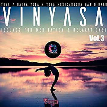 Vinyasa, Vol.3