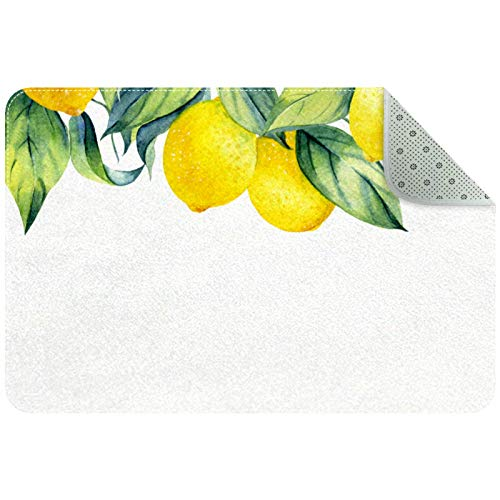 Felpudo interior antideslizante, superabsorbente de barro y nieve mágico interior para atrapar suciedad, alfombra para puerta de entrada, limones