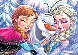500 piece jigsaw puzzle Frozen Anna, Elsa and Olaf (35x49cm)