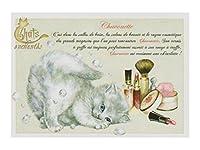 フランス製 キャットポストカード (Chavonette) CPK036