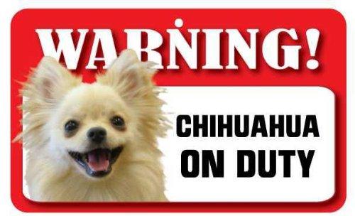Panneau pour chien Chihuahua à poils longs – Carte lustrée