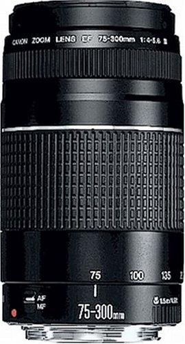 Canon EF 75-300mm F4.0-5.6 III Bild