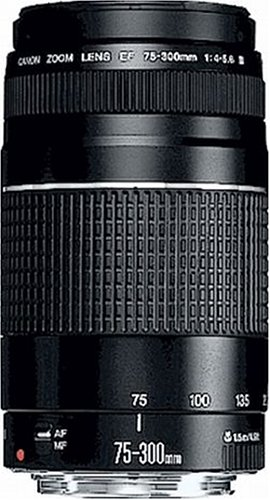 Canon Teleobjektiv EF 75-300mm F4.0-5.6 III für EOS (58mm Filtergewinde, Autofokus), schwarz