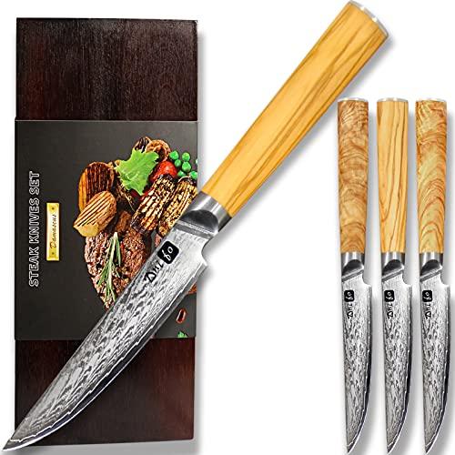 Dnifo Steak Knives, 4Pcs Damascus Premium Steak Knives Set (Non-Serrated), 5' Japanese Damascus...