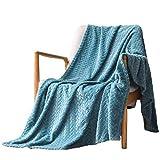 Exclusivo Mezcla Large Flannel Fleece Throw Blanket, Jacquard Weave Leaves Pattern (50' x 70', Slate Blue) - Soft, Warm, Lightweight and Decorative