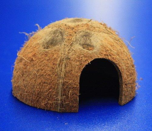 WFW wasserflora Coco Shell S - Ø 8 cm/Kokosnuss als Brut- und Versteck-Höhle