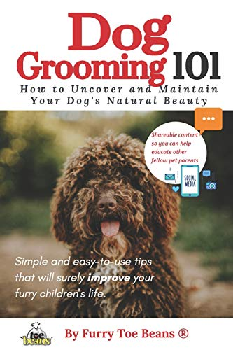 Dog Grooming 101: How to Uncover and Maintain Your Pup's Natural Beauty