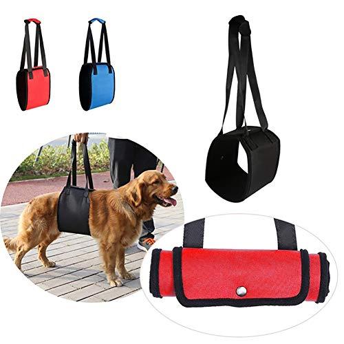 Ordertown - Cuerda de protección para Perros y Mascotas, Protector de Perro, arnés de Cuerda para Silla de Ruedas, Ayuda a Ayudar a Las Mascotas, Las Mascotas Son Buenas Amigas de los Seres Humanos