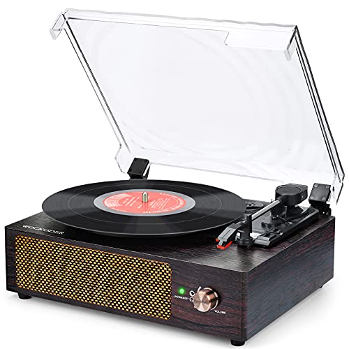 Record Player Bluetooth Turntable Vinyl record player with Built in...
