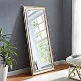 Naomi Home Framed Floor Mirror Champagne/65 x 31'