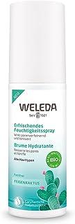 WELEDA(ヴェレダ) ウチワサボテン フェイシャルミスト 100mL 高保水ケア ミスト化粧水 保湿 メイク前後に グリーンフローラルの香り 天然由来成分 オーガニック