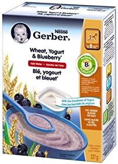 Gerber Gerber Wheat W/Yogurt & Bluebe
