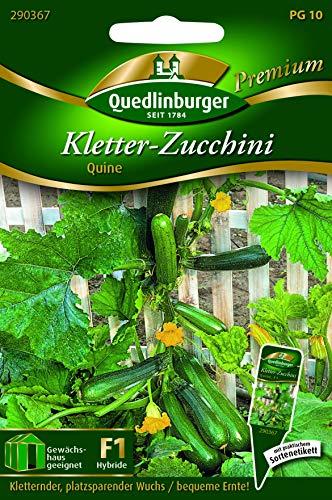 Kletterzucchini, Quine Quedlinburger Saatgut Samen 290367