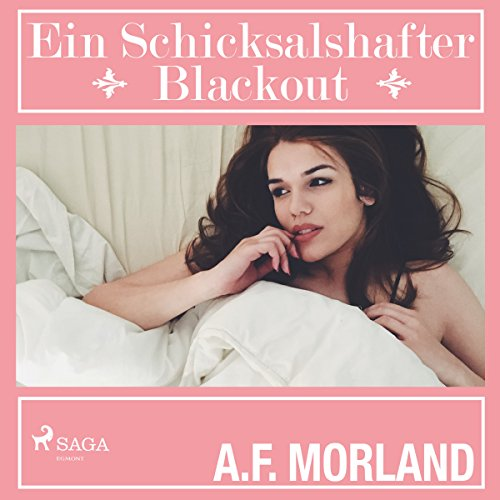 Ein schicksalshafter Blackout audiobook cover art