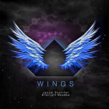 Wings (feat. Twilight Meadow)