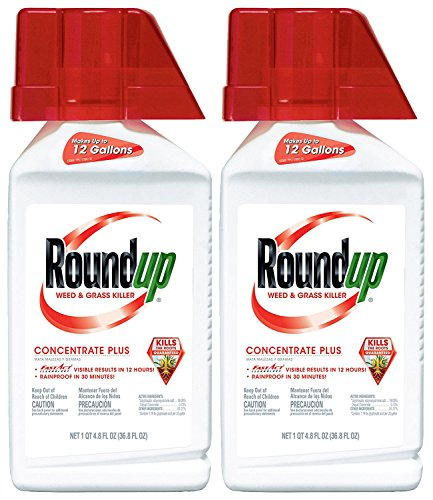 Roundup Weed and Grass Killer Concentrate Plus   Concentrated Value 2 Pack   73.6-Ounce Total   Makes Up to 24 Gallons   Proven Long Lasting Industrial Strength   Round Up Destroys Grass pests