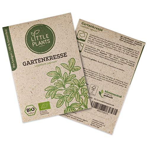 Little Plants BIO-Gartenkressesamen (Lepidium sativum) | BIO-Kräutersamen | Nachhaltige Verpackung aus Graspapier | Kräuter-Samen | BIO-Saatgut für ca. 1100 Gartenkresse-Pflanzen