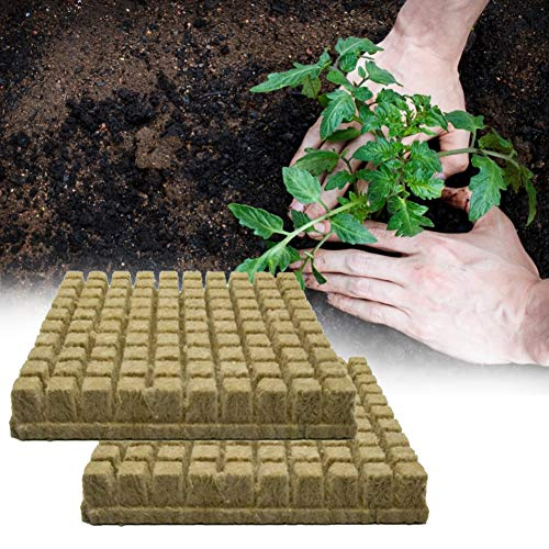 KiMiLIKE 50 Stück Steinwolle Steinwolle Hydroponik Wachsen Medien Starter Würfel Stopfen für Stecklinge Klonen Pflanzen Vermehrung Samen Starten Steinwolle Starter Würfel
