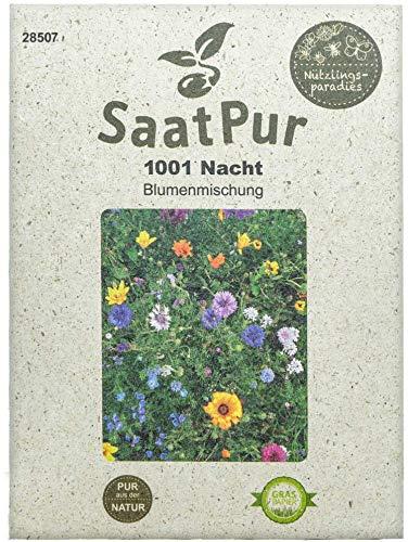 SaatPur - Pérgola de flores 1001-noche, mezcla de flores de un año, abejas, mariposas, insectos
