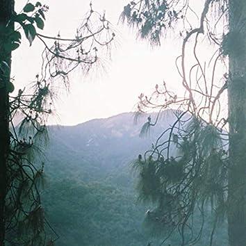 Nice Day, Climb a Tree (feat. Floro)