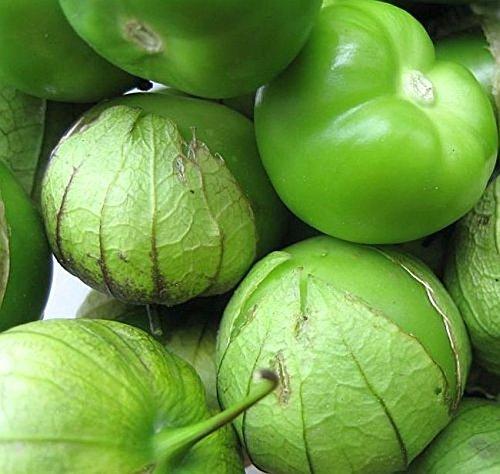 PLAT FIRM GERMINATIONSAMEN: 100 - Seeds: Riesen Tomatillo - Für traditionelle grüne Salsa-Sauce! Excellent Flavor!
